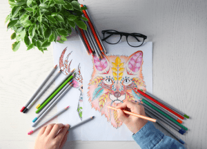 Adult coloring book supplies