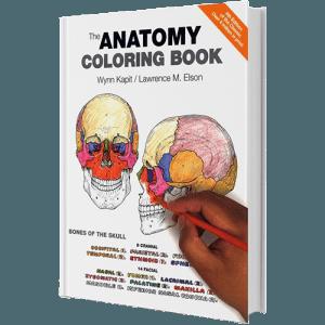 71 Best Anatomy Coloring Book Reddit Free Images